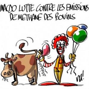 Source : Rue 89, dessin de Na !