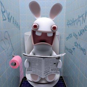 lapin_cretin-WC